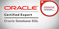 Oracle Database SQL Expert for Oracle Database 11g